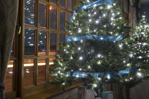Christmas tree with fairy lights on at the Beach Ballroom